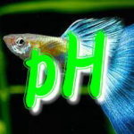 ペーハー(pH)測定からわかる水槽環境