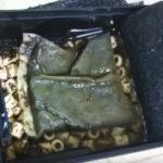 間違ったフィルター掃除は逆効果!熱帯魚水槽のフィルター掃除方法と注意点