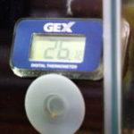 冬場の水槽水温低下を防ぐ保温方法と水温の上げ方